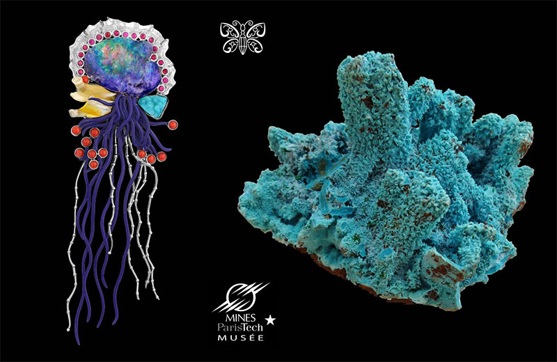 """The """"Portuguese Man of War"""" jellyfish by Paula Crevoshay is made with play-of-color opal, chrysocolla, sapphire and coral. On the right, a specimen of chrysocolla from the Democratic Republic of Congo in the collection of the Mineralogy Museum."""