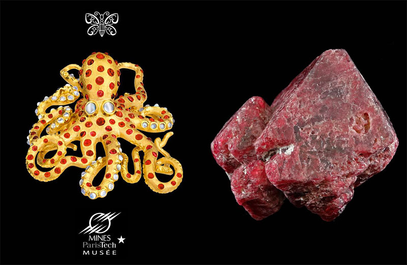 """""""Ula the Octopus"""" by Paula Crevoshay (a favorite of Eloïse) is created in gold with Burmese spinels and moonstones. It is paired with a twinned crystal of rough red spinel from the Mineralogy Museum collection. The jewel is in the collection of Pala International's Jeanne Larson. """"We love octopus,"""" Bill Larson said, and the Burmese provenance of the gemstones sealed the deal. (Two years ago, while at the Denver mineral show, Will Larson raved about a dish of octopus prepared at Rioja, one of the city's premier restaurants in Larimer Square.)"""