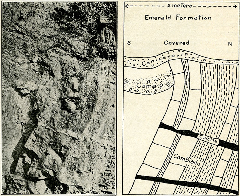 Fig. 8a (left) and 8b.—Photograph and key-sketch showing the  Cenicero ,  Cama , and  Cambiado , as exposed between Banco Central and Los Chulos. (Note drag and calcite vein in fault plane in the  Cambiado , indicating overthrust from north to south followed by mineralization.)