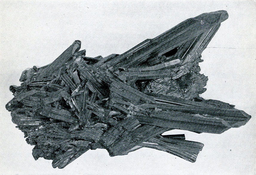 Stibnite from Ichinokawa Mine, Iyo, Japan. A group of slender prismatic crystals.