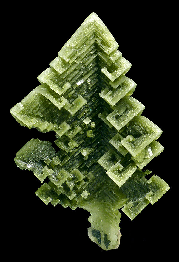 O Tenenbaum.  Skeletal halite crystal from the Sieroszowice mine. Size 5 cm. Spirifer Minerals specimen. (Photo: M. Wikiera)