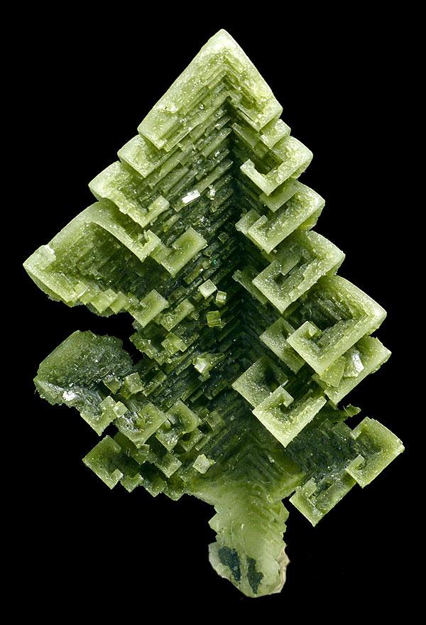 O Tenenbaum.Skeletal halite crystal from the Sieroszowice mine. Size 5 cm. Spirifer Minerals specimen. (Photo: M. Wikiera)