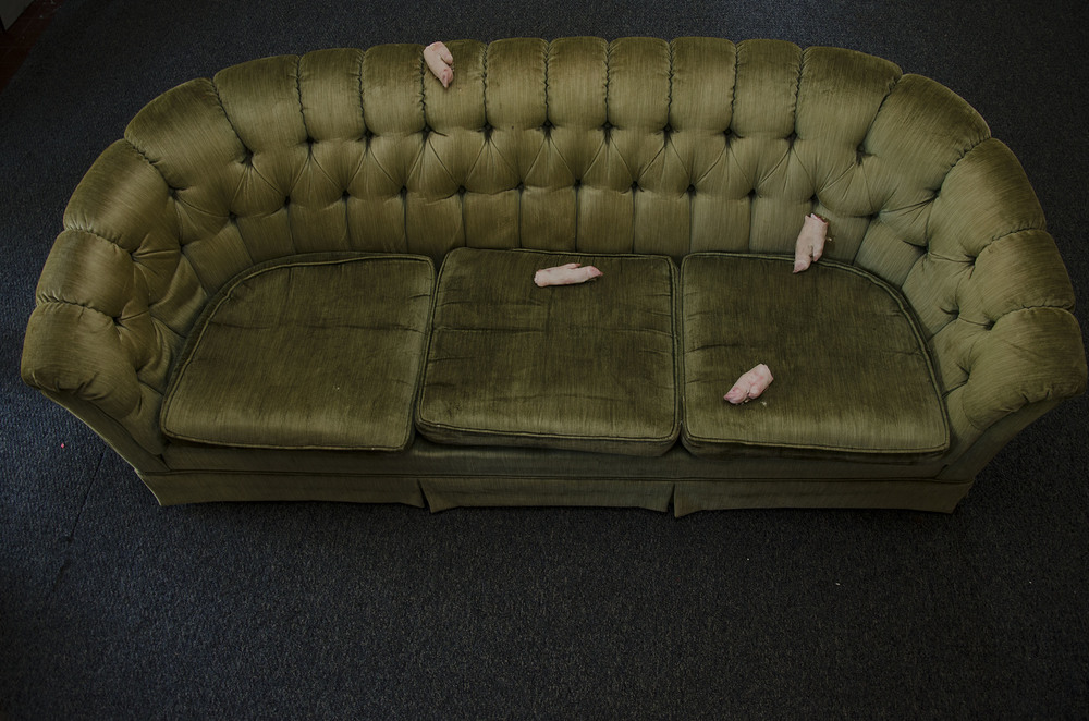pig_couch.jpg