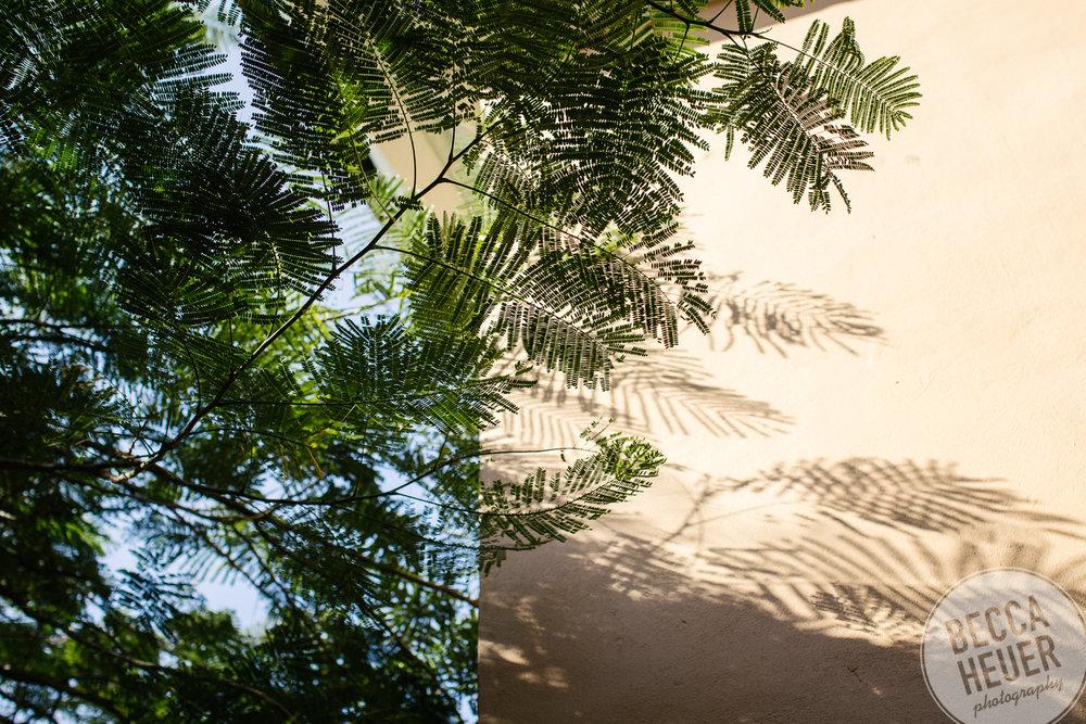 Cuba-013.jpg