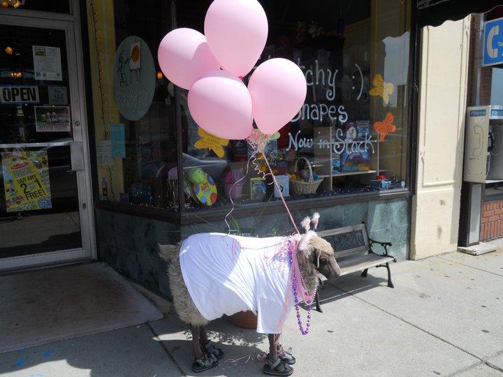 pink_sheep.jpg