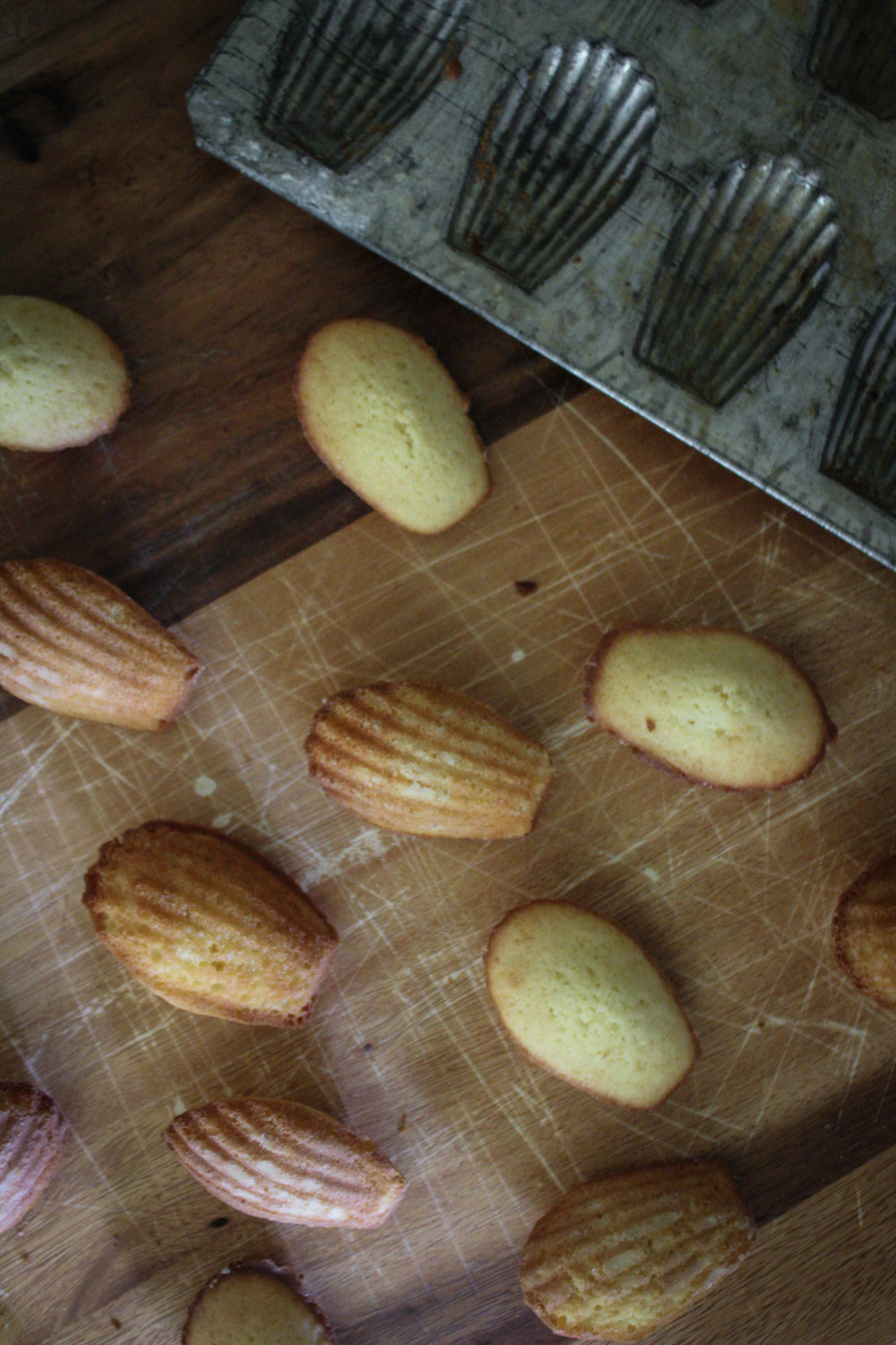 Honey Madeleines from Ruby Tandoh
