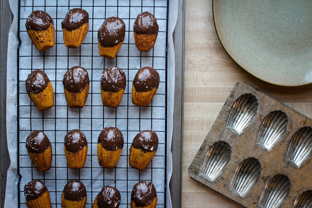 Pumpkin Madeleines with Dark Chocolate and Sea Salt