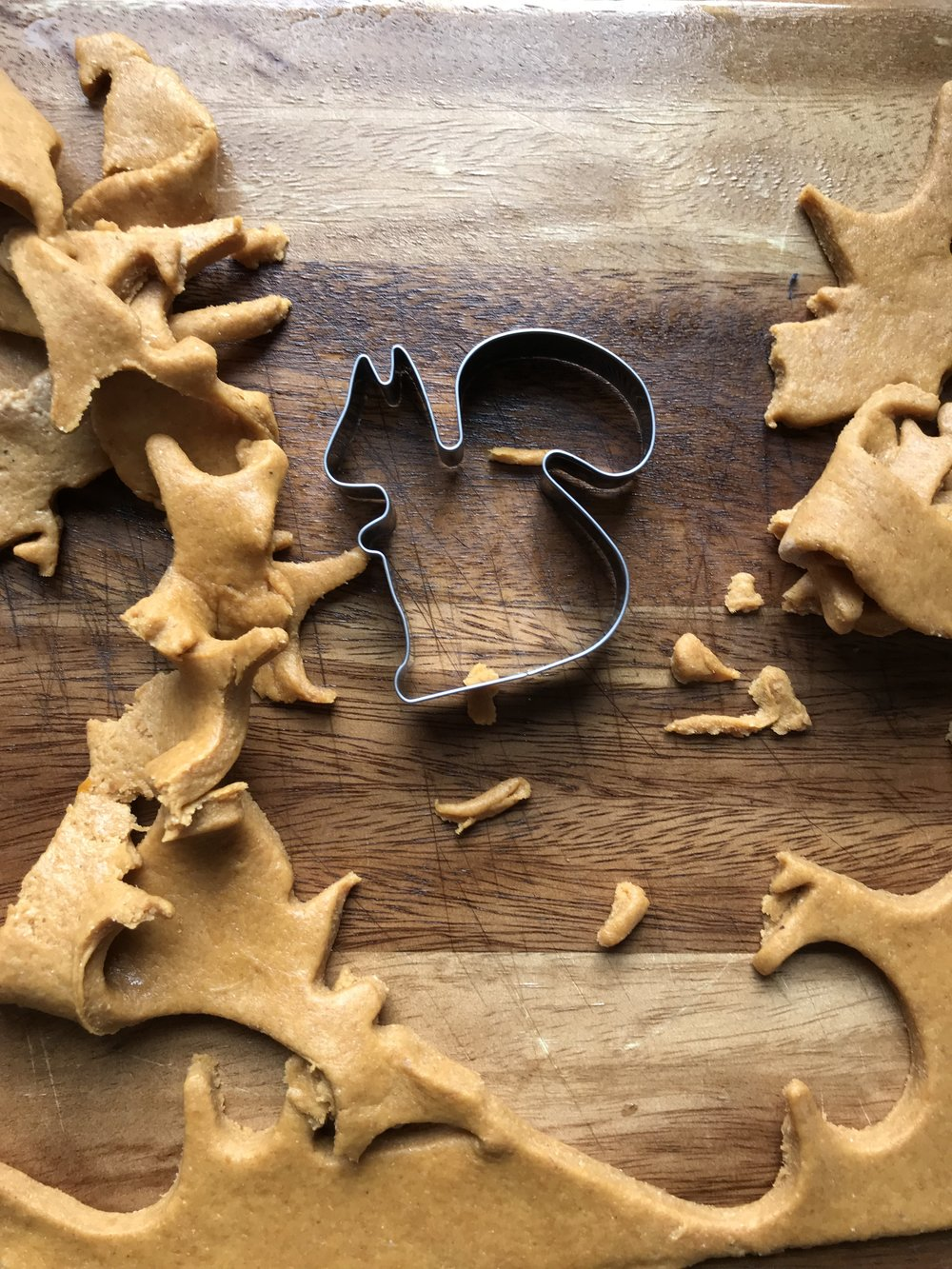 Peanut Butter and Pumpkin Dog Biscuits
