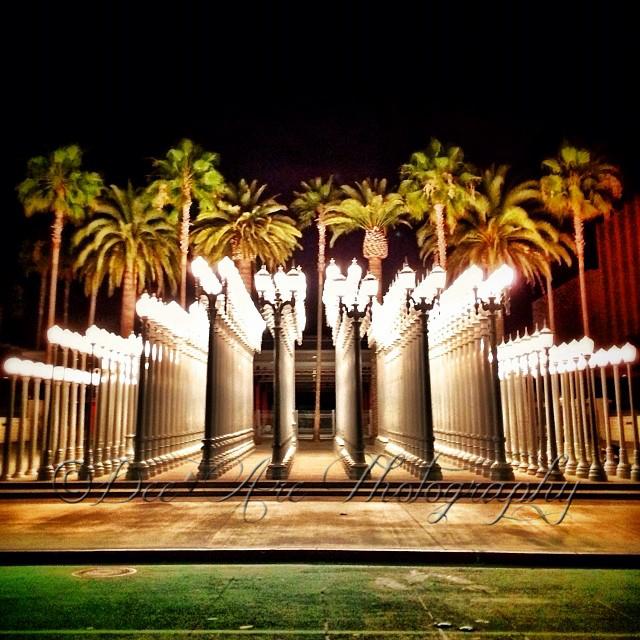 LA City Lights.jpg