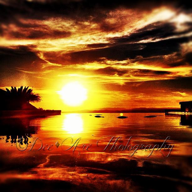 Sun Reflecting Pool.jpg