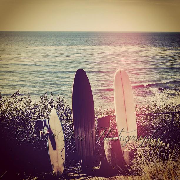 Surfboards.jpg