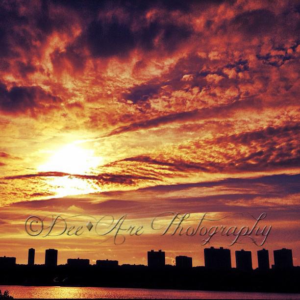 Bright NYC skyline.jpg