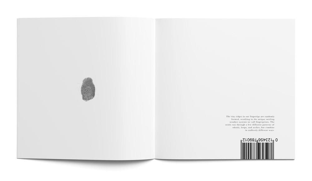 flat_book2.jpg