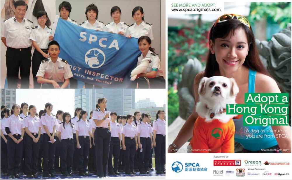 SPCA capture