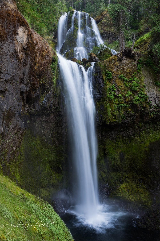 Falls Creek Falls Spring