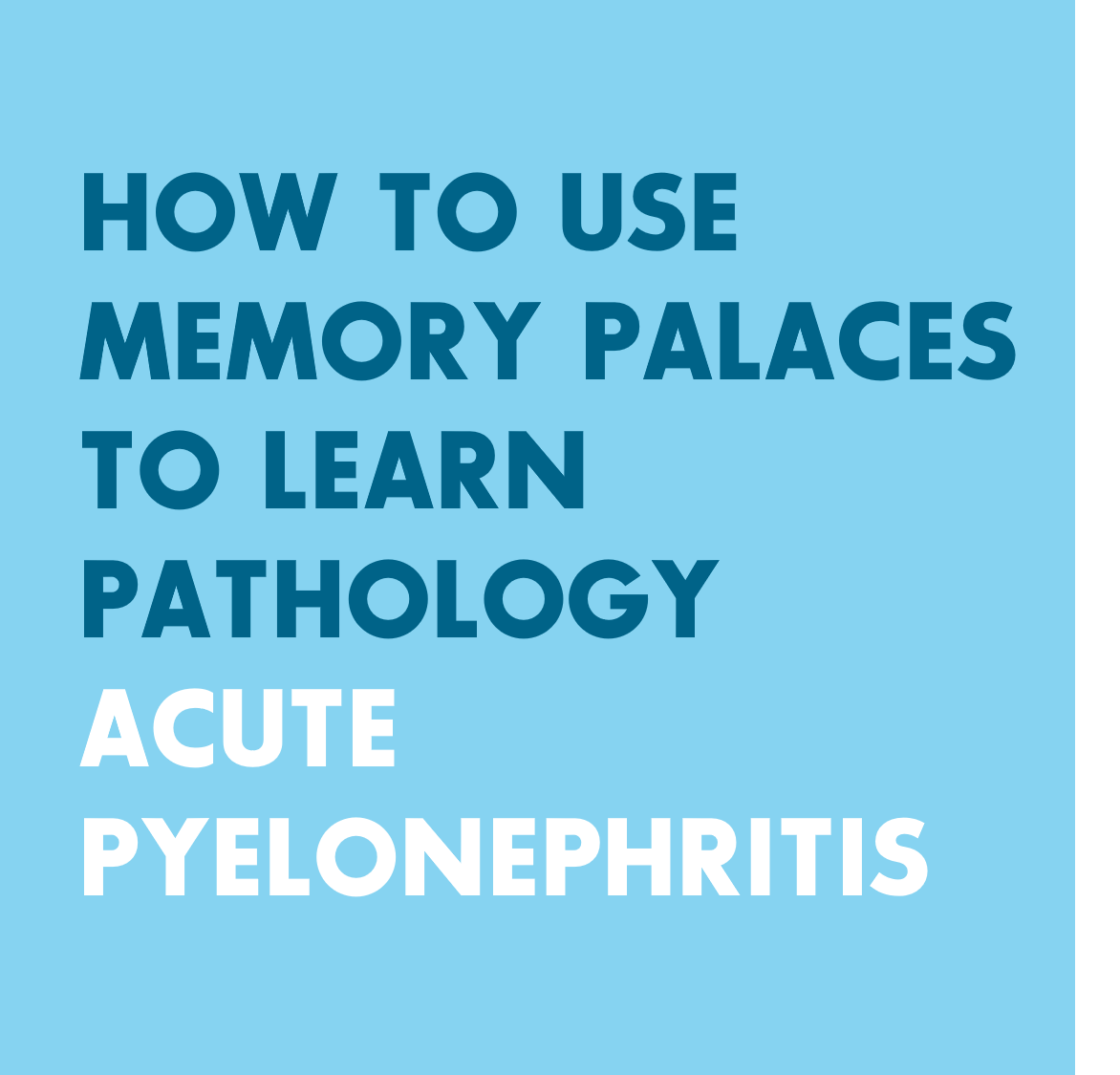 Palace of Memory: a description of the method for memorizing 20