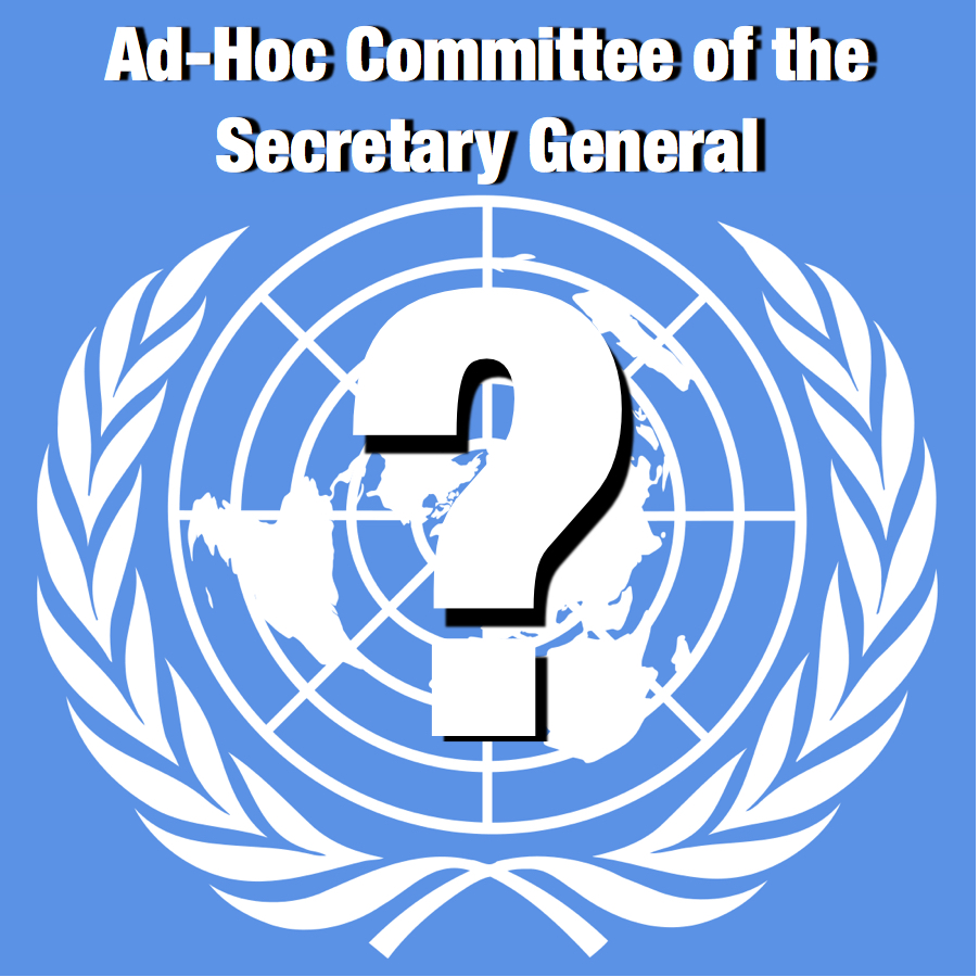 Ad-Hoc Committee of the Secretary General -