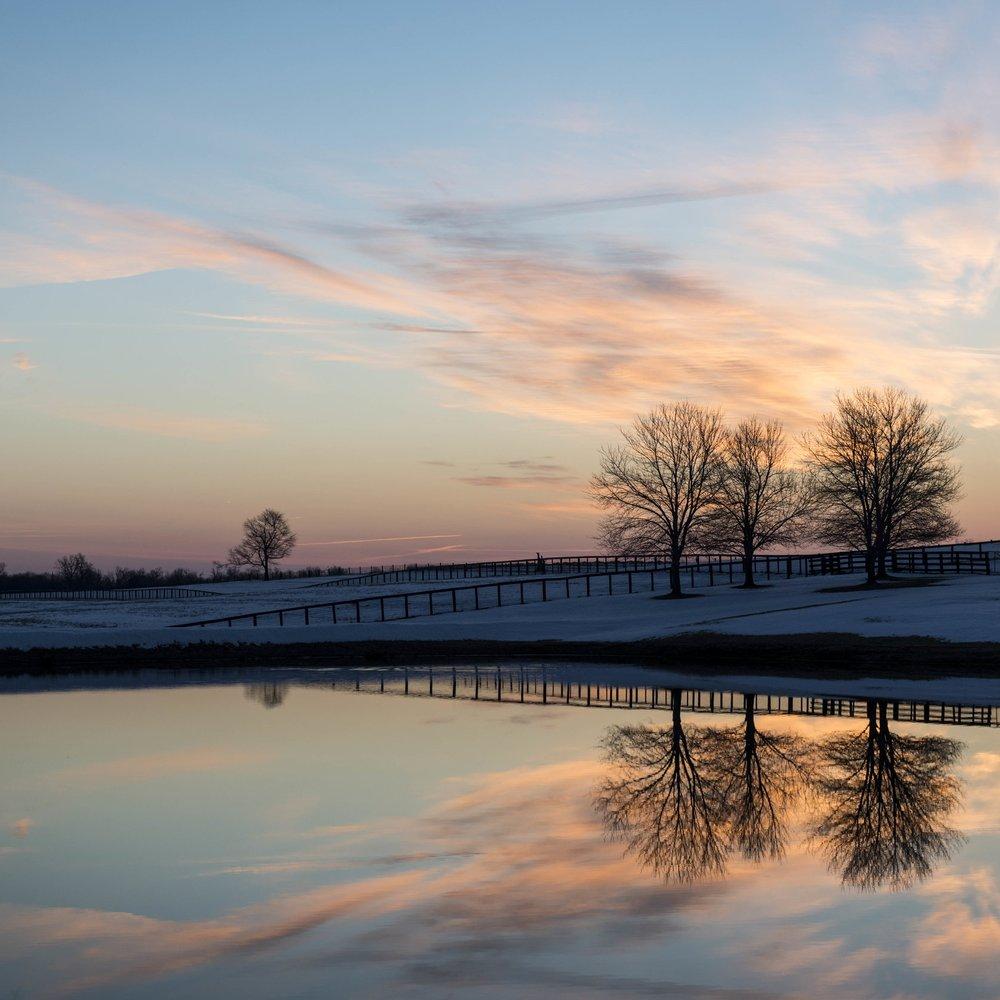 Claiborne Farm Paris, Bourbon County March 3, 10:00 am (wait listed), 12:00 pm (wait listed) March 4, 10:00 am (wait listed), 11:00 mm (wait listed)