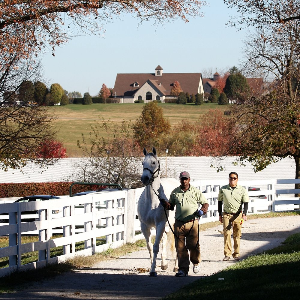 Keeneland Lexington, Fayette County March 3, 9:00 am (wait listed) March 4, 1:00 pm (wait listed)