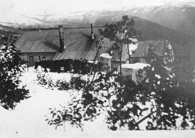 Photo Harrietville Museum.