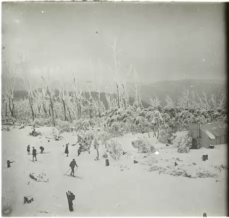 Skiers on Donna in 1929 with the summit hut on the right. The Woollybutts in the background were killed in the 1926 bush fires. Photo Richard Courtney.