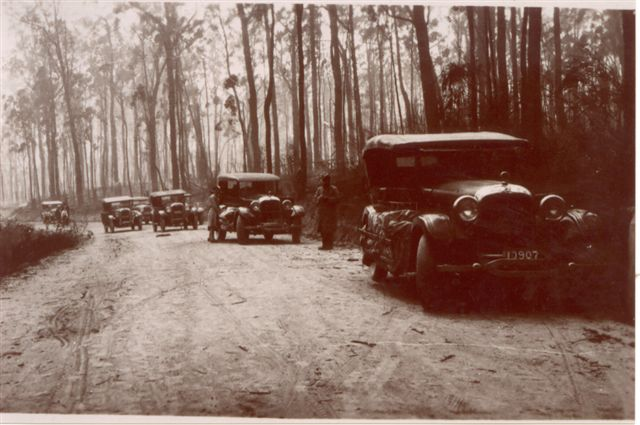 A Pioneer Tours trip to Mt. Donna Buang. Photo supplied by  Vivienne Worthington.
