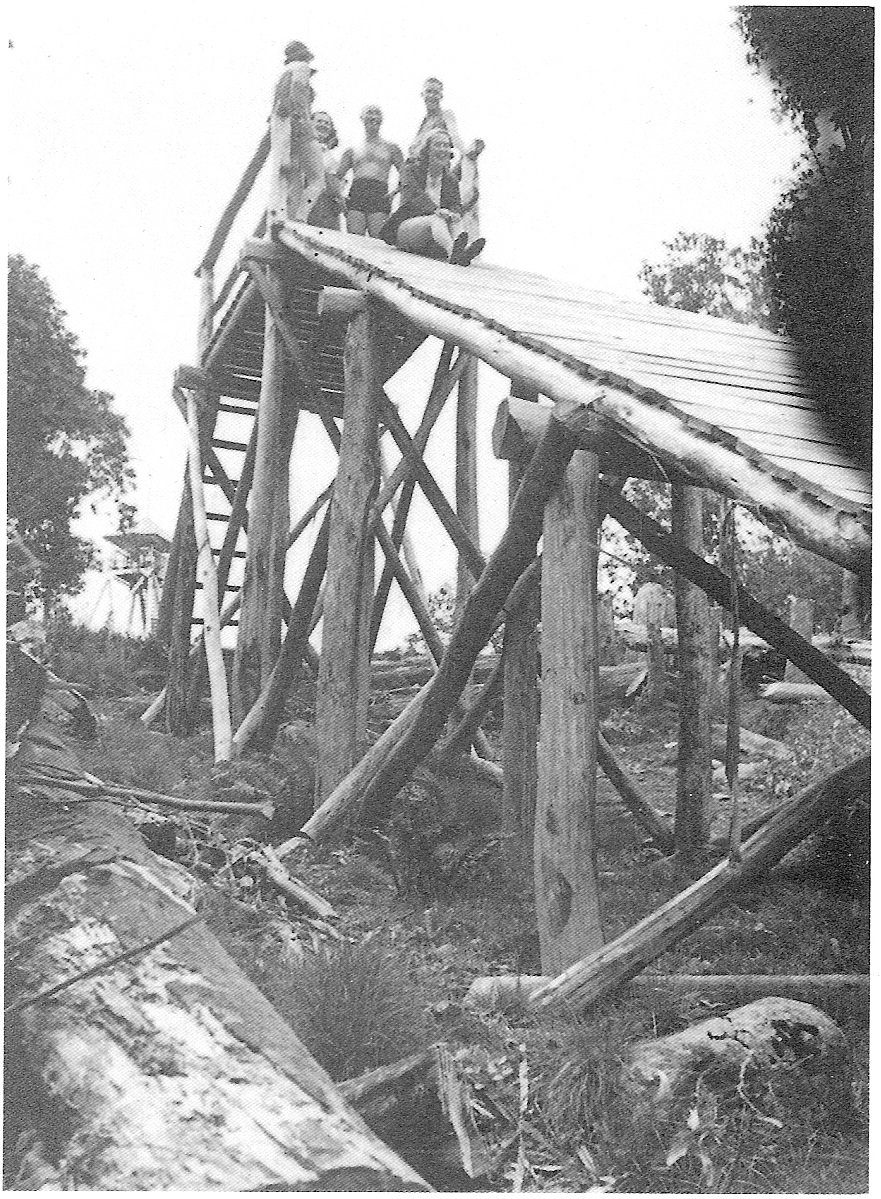 The original wooden platform at the top of jump slope in summer. The summit tower can be seen behind it to the left. Photo Mick Hull.