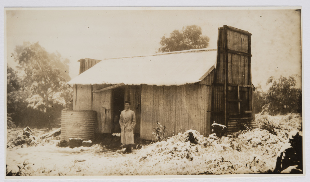'Old hut on summit of Donna Buang.'  Undated photo by Ella McFadyen.   NSW State Library