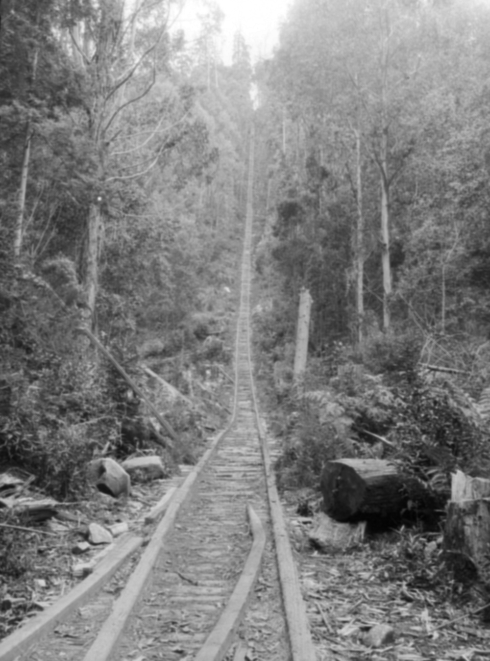 Jacob's Ladder incline on Currie's tramway from Millgrove, terminated at the Ben Cairn Road, 2 km west of the turnoff to Donna Buang Summit. It continued to be used for pedestrian access to the mountain long after the tramway closed in 1934.