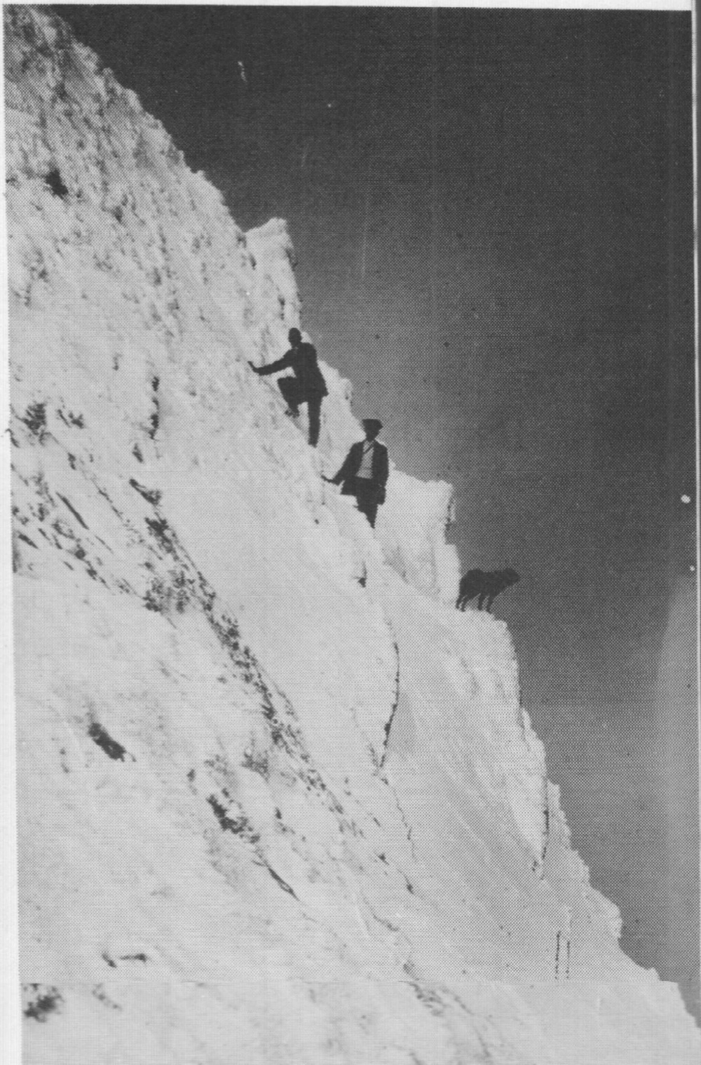 Climbers and dog. Mt Feathertop 25/8/1911. Photo prob by either R. M. Bowie or Jim Tobias