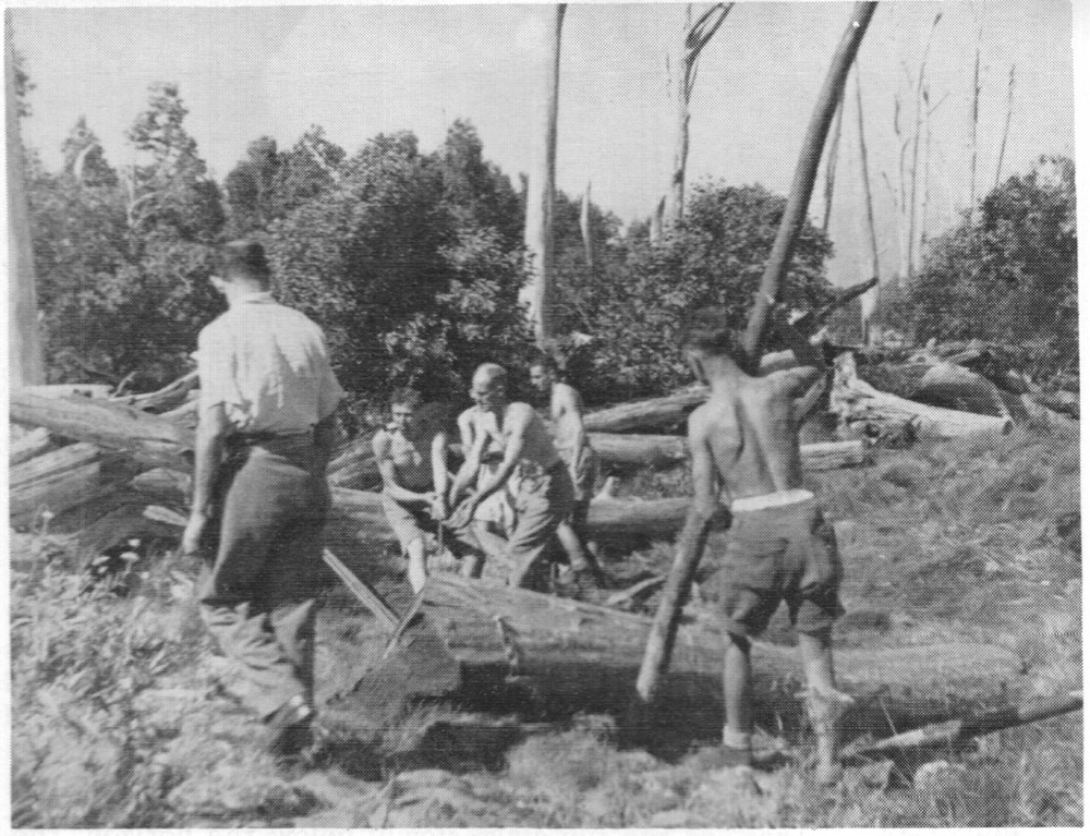 Mick Hull's photo of the 1934 slope clearing work party.