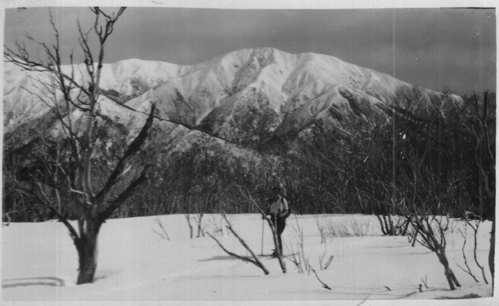 Feathertop 1930 from Lake Spur just above where Westons Hut was built Photo Kath Magill