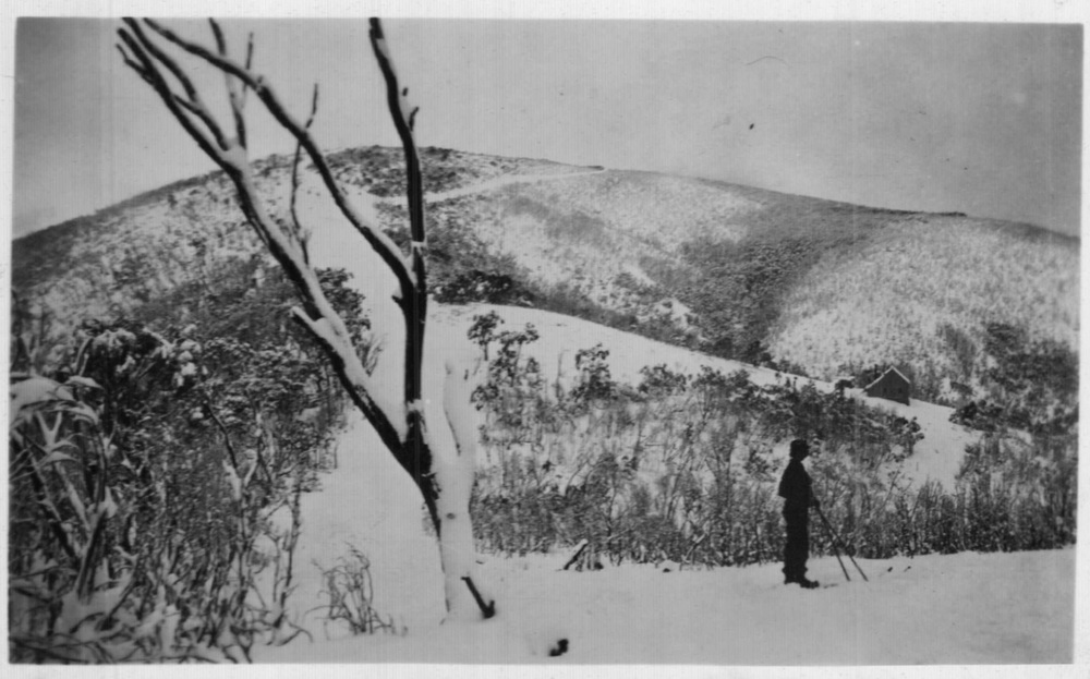 Ski runs below the treeline on Bungalow Spur 1934. Photo K. Magill.