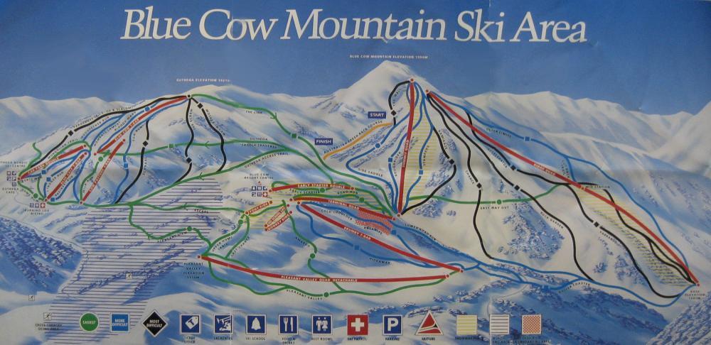 1994 . Blue Cow and Guthega. Medium resolution.