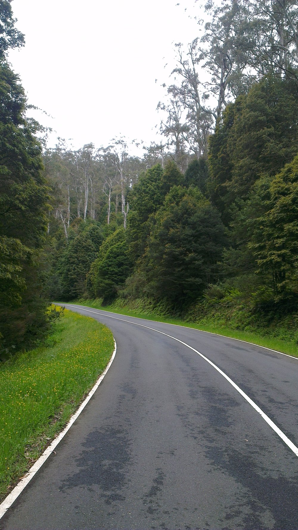 The road near 10 Mile in December 2012, a vast improvement on the 1930s.  Photo © David Sisson.