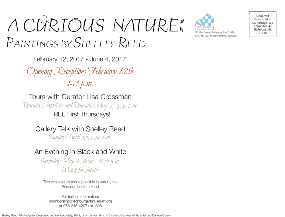 Curious Nature: Paintings by Shelly Reed Postcard
