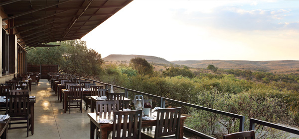The Cradle  - Beautiful View for Sunday Lunch - The Cradle
