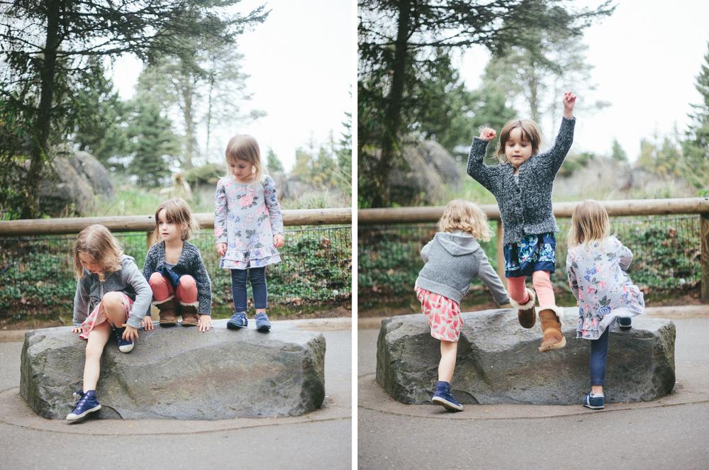 zoo_photo_03.jpg