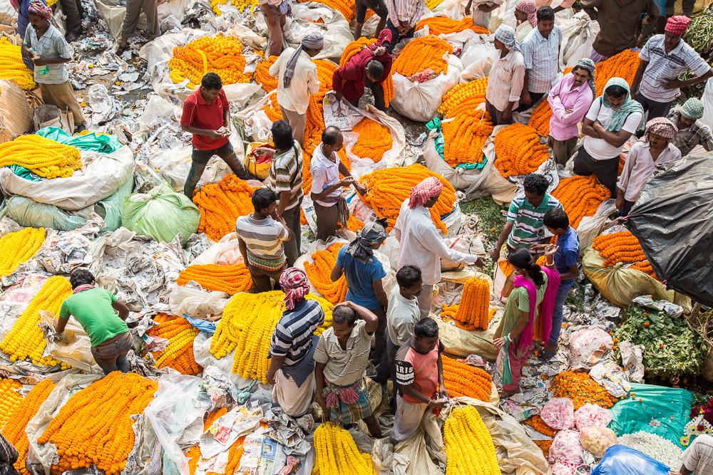 Flower market near the Haora Bridge, Kolkata