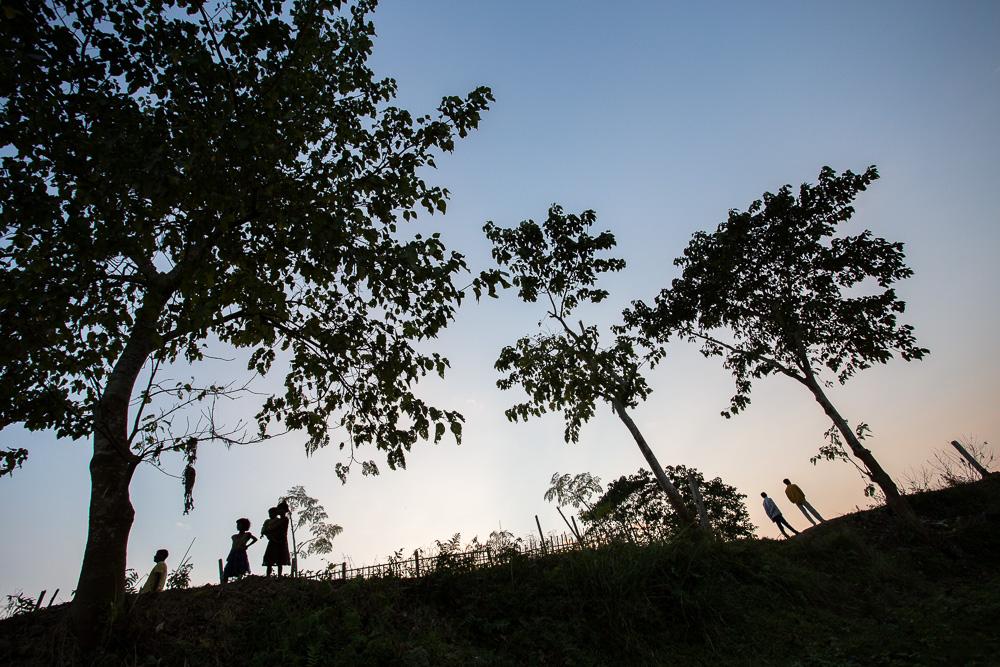 Evening light, village near Kaziranga, Assam