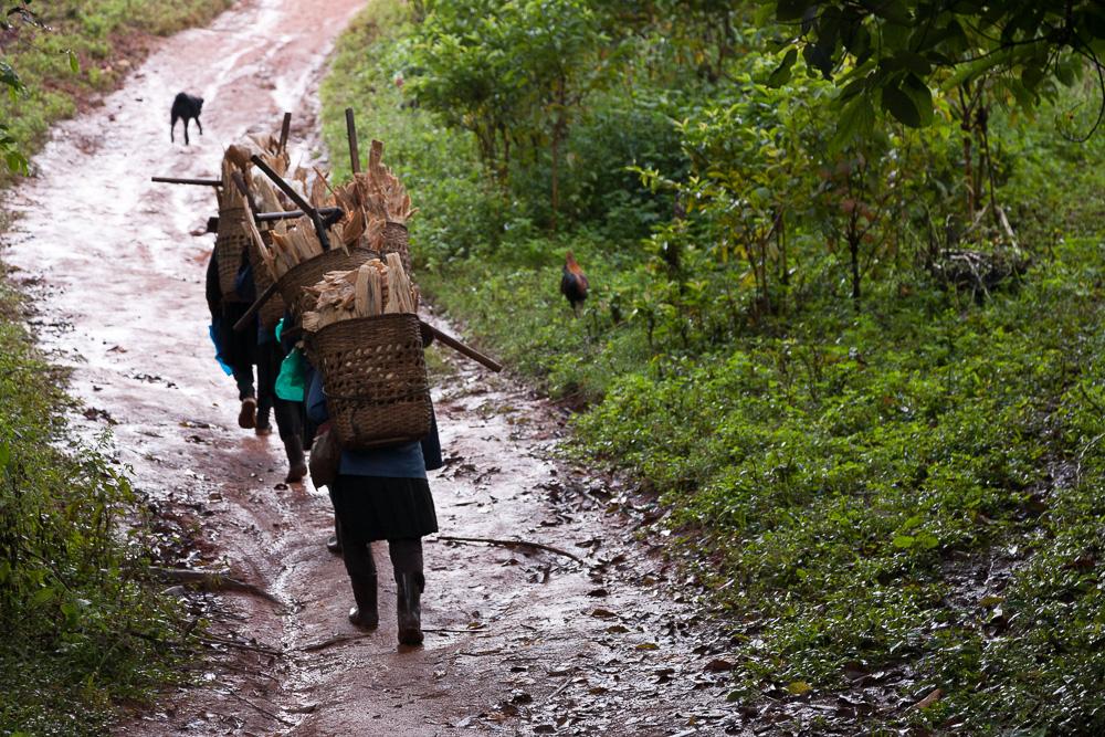 Collecting wood, Myanmar