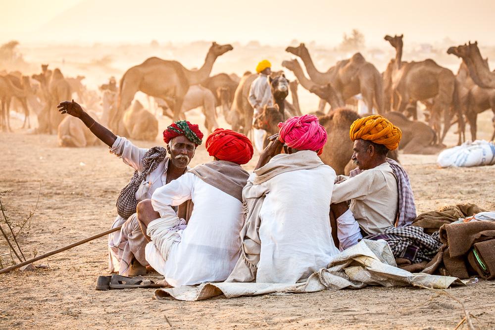 Pushkar camel fair, Rajasthan