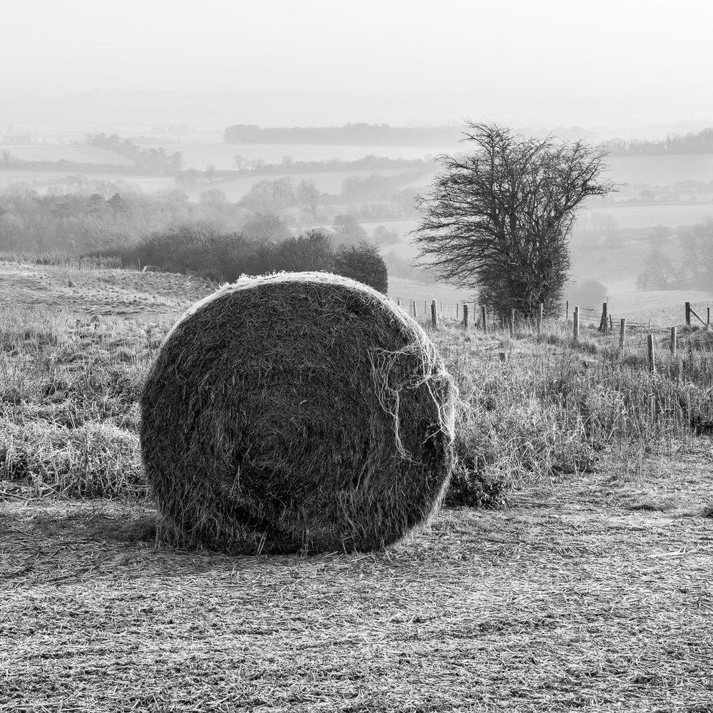 Near Tidcombe