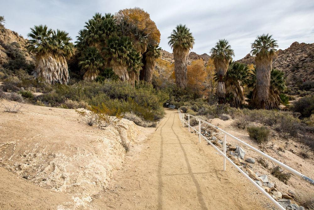 American path