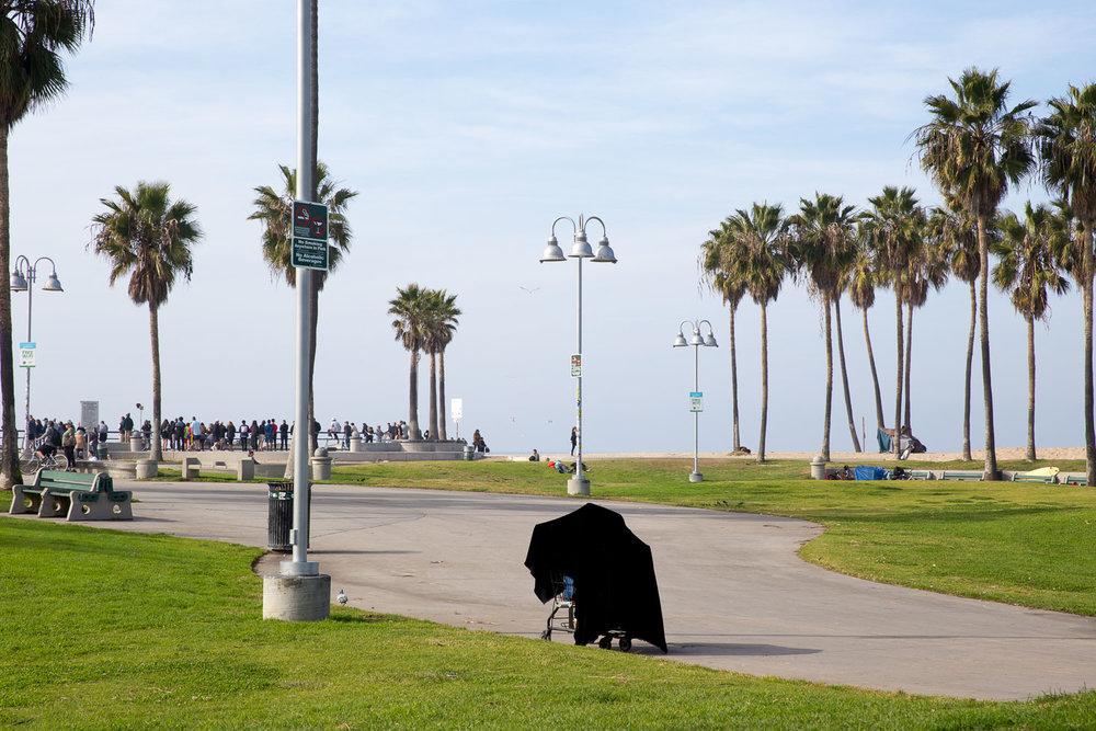 American beachscape