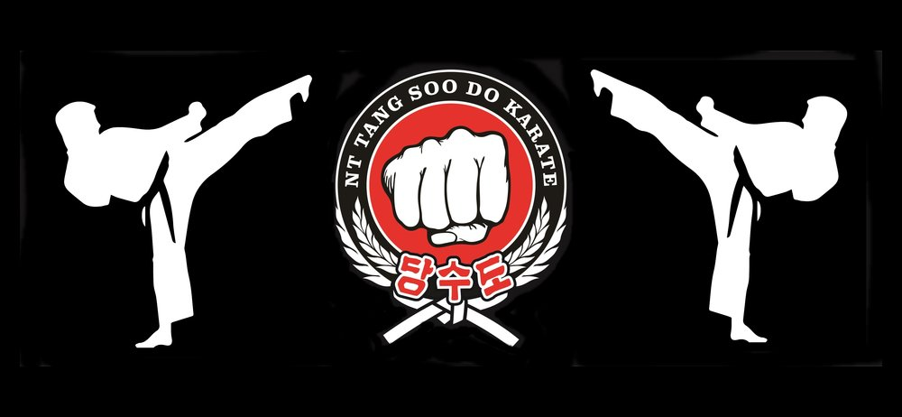 You Can visit NT Tang Soo DO here!
