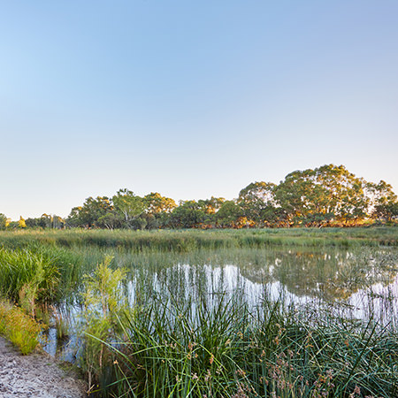 Project: Eric Singleton Bird Sanctuary Location: Perth / Australia Coverage: Aerial / Landscape