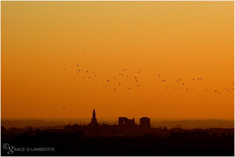 76-autumn-flock-above-rome.jpg