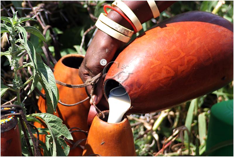 57-milking-datoga-tribe-Tanzania20D-588.jpg