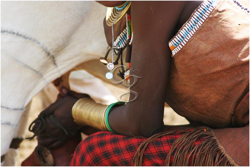 57-milking-datoga-tribe-Tanzania20D-589.jpg